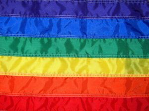 rainbow-gay-pride-flag-543733-m
