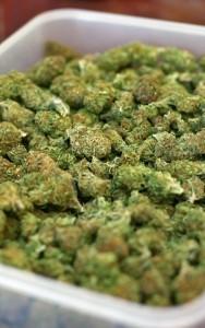 tray-of-marijuana-1437843-m