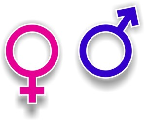 gender-symbols-1161576-300x246
